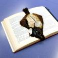Raamatusõbrad on leidlik rahvas – sellest annavad tunnistust köidete vahele järjehoidjaks pandud ja sinna unustatud esemed.
