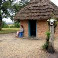 Mina ja minu abikaasa Indrek olime Ugandas mööda saatnud jõulud ja võtnud vastu uue aasta ning mõtlesime edasi liikuda Keeniasse, kuid sinna meid ei lastud. Seetõttu otsustasime külastada Kuninganna Elizabethi rahvuspargi lõunapoolset nurka – Ishashat.  Hommik oli ootamatult sajune ja see pole Aafrikas ringi sõitmiseks just kõige mugavam, aga soov kohtuda unikaalsete puu otsas elavate lõvidega sundis meid teele.
