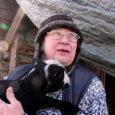 """Mõnnuste küla Laasi talu perenaine Vilve Nurmela maalambafarm ei ole ainulaadne üksnes Saaremaal, vaid Eestimaal tervikuna. """"Minu põhimõte on see, et maa-lammast tunnustada. Praegu on ta põõsatagune loom. Tõu tunnustamisega pole kuhugi jõutud. Maalammas väärib taas au sisse tõstmist,"""" toonitas mitmekümneaastase kogemusega lambakasvataja."""