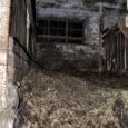 Orissaare vallas Maasi külas hobuste olukorraga tutvumas käinud spetsialistide hinnangul hobused otseselt näljas ei olnud, kuid loomade eest hoolitsemine käib nende arvates perenaisel üle jõu.