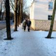Kuressaare linnas kehtib eeskiri, mis ütleb, et kinnistuomanik peab korras hoidma ka ala, mis jääb tema krundi ja sõidutee vahele. Pahatihti on need alad korrastamata, nagu näitas ka nüüd juba lõppema hakkav talv, kui kõnniteed kohati uisuvälja meenutasid.