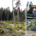 Kolmapäeva õhtul juhtus ränk tööõnnetus Mustjala vallas Vanakubja külas, metsatöödel hukkus harvesteri parandanud Urmas Lomp, kes oli Saaremaal tuntud ka kui maasturite orienteerumisvõistluse Saarekoll peakorraldaja.