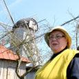 Kuressaare elanik Signe Ellik räägib, kuidas ta oma väikeses suvekodus Angla tuulikumäel turistide tähelepanu keskmes hakkama saab.