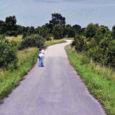 Eile avalikuks tehtud Google Street View rakenduse Eestis pildistatud kaadrid pakuvad nii mõnegi kentsakas-huvitava vaatepildi. Muu hulgas on pildile jäänud Kuivastu maantee ääres hellalt teineteise embuses noored.