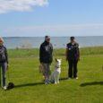 Möödunud nädalavahetusel korraldasid Saaremaa koerteklubid oma mõõduvõtmisi: Aktiiv viis laupäeval Kuressaare tivoliplatsil läbi koerte match show', kus valiti Saaremaa kenam kuts ja kutsikas, Saarlaste Agilityklubi korraldas aga Roomassaare sadama muruplatsil […]