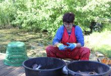 Rannakalurid said uusi nippe kalasuitsutamiseks