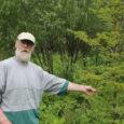 """Hiljutisel Saaremaa külade päeval Torgus uudistasid-valisid osalejad sobilikke istikuid oma koduaeda viimiseks. Hästi läksid kaubaks ka Hänga küla mehe Heino Mällo pisikese puukooli taimed. """"Minu aeda sobib valge pihlakas. Linnud […]"""