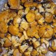 Pädaste mõisa hortikulturist Anna-Liisa Piiroja ja seenespetsialist Erle Unt võtavad täna Muhus seenehuvilised sappa ja lähevad mõisamaadele metsaande korjama. Pädaste traditsioonilisele seenenädalavahetusele, mis tänavu juba üheksandat järjenumbrit kannab, on seenehuvilisi […]