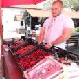 Eile võis Kuressaare turult osta Poola maasikaid. Saaremaa maasikakasvatajad arvavad üksmeelselt, et tänavu valmib saak jaanipäevaks või hiljemalt juuli alguseks. Pihtla valla maasikakasvataja Helve Turja ütles Saarte Häälele, et kuigi […]