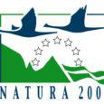 Saaremaa tuuleenergeetika ettevõte Baltic Wind Energy OÜ on taas vaidlustanud Natura 2000 võrgustiku alade nimekirja, nõudes ettevõtte omandis olevate kinnisasjade Natura 2000 võrgustiku alade loetelust väljaarvamist. Tallinna ringkonnakohtu pressiesindaja Kairi […]