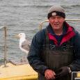 """Räime püüti kevadhooajal Saare- ja Muhumaal rohkem kui eelmisel aastal, ehkki on ka erandeid. Tuulehaugi oli aga kõigil kasinalt. """"Mina olen rahul,"""" ütles Läätsa ranna kalur Jaan Põld lõppenud räimehooaja […]"""