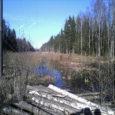 """Mustjala vallas kinnistut omav naine, kelle metsamaad läbib Eesti Energiale kuuluv elektriliin, on nördinud, et ta ei saa liinialust maad metsa kasvatamiseks kasutada, kompensatsioon aga ei kata isegi maamaksu. """"Selle […]"""