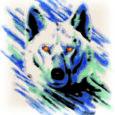 """Hundijahi üks alusdokumente on jahieeskiri, milles on kirjas: """"Hundile võib pidada peibutus- või varitsus- või hiilimis- või ajujahti ning jahti piirdelippe ja jahikoera kasutades 1. novembrist 28. veebruarini."""" Eestis on […]"""