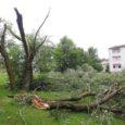 Pühapäeva hilisõhtul Kuressaaret räsinud keeristorm murdis puid ja viis majadelt katuseid. Päästeameti andmetel käisid päästjad pühapäeval loodusjõududest põhjustatud sündmusi likvideerimas kümnel korral. Head lugejad, saatke meile oma tormifotosid või -videoid […]