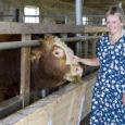 Saaremaa üks tuntumaid lihaveisekasvatajaid Kalle Kuusk usaldas talu edasiviimise pere keskmisele tütrele Annikale, kes parvlaeval töötamise kõrvalt end järjest enam talu tegemistele pühendab. Esmaspäeval parvlaeval Saaremaa kahenädalase vahetuse lõpetanud toitlustusjuht […]