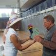 Neljapäeval tegid Orissaarevalla eakad koos eakaaslasteganaabervaldadest alevikustaadionil sporti ning laulsid,tantsisid ja mängisid pilli. Kehakinnituseksmaitsti võistlustöönakeedetud kalasuppi. Esimene eakate päev toimusOrissaares aasta tagasi.Nii nagu aasta tagasi, said osalejadtänavugi oma võimeidproovida saapaviskes […]