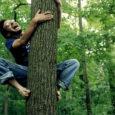 3.–4. augustil toimusid Kuressaares Eesti esimesed arboristide meistrivõistlused puu otsa ronimises.Ülesandeid oli kokku viis ja iga kord kasutati erinevat puud. Võistlejaid oli Eestist, Lätist, Soomest, Rootsist, Iirimaalt ja Inglismaalt. Kõrgeima […]