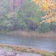 Tänavused keskmisest vihmasem kevad ja suvi on metsameestele probleeme tekitanud. Liigniiske pinnas ei lase metsatöid teha. Erametsa konsulent Mati Schmuul kinnitas Saarte Hääle toimetusse jõudnud teavet. Schmuuli sõnul käis ta […]