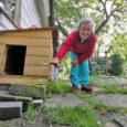 Kuressaare linnavalitsuse poole pöördusid Veski ja Väike-Sadama tänava elanikud, kelle jaoks tähendab pikem vihmasadu üleujutust koduaias või halvemal juhul ka lainetust köögipõrandal. Linnavalitsusele saadetud pöördumisele on alla kirjutanud 12 perekonda, […]