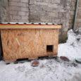 """Kuressaare südames, Kauba tänaval elutsevad kodutud kassid said jõulupühade ajal ilusa üllatuse osaliseks: anonüümne heategija kinkis sealsetele kassidele väikese soojustatud """"hoovimajakese"""". Inimesed, kellelt Saarte Hääl kassimajakese kohta uuris, palusid, et […]"""