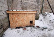 Heategija kinkis Kuressaare kodututele kassidele maja