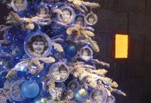 Oh kuusepuu, oh jõulupuu...