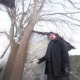 Eesti apostlik-õigeusu kiriku (EAÕK) Kuressaare püha Nikolai koguduse nimel linnavalitsusele läkitatud kirjas tõdeb isa Andreas, et otsus mitte lubada ohtlikke puid maha võtta kahjustab nii kiriku kui naabrite vara. Lähemalt […]