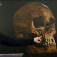 Sel nädalal vapustas teadusmaailma sõnum, et Inglismaal Leicesteri linnas on leitud kuulsa kuninga Richard III maised jäänused. Bristoli ülikooli tuntud arheoloogiaprofessor Mark Horton kirjutas aga paar päeva tagasi autoriteetse teadusajakirja […]