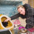 Eile tutvustas MTÜ Saaremaa Lemmikloomade Turvakodu Saarte Häälele oma uut kassidele mõeldud varjupaika. Seni veel lõplikult sisustamata ruumides EPT hoovis asuva maja teisel korrusel nautis privaatsust vaid üks kass – […]
