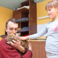 Eile oli Kuressaares Talli 10 asuv kasside turvakodu saginat täis. Neli turvakodu praegust asukat pidid ära kannatama kogu avamisele tulnud külaliste tähelepanu. Peale kass Nupsu pugesid kõik teised kassid igaks […]