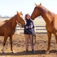 Eesti tõugu hobuse propageerija Aarne Lemberi pereettevõte Asva Hobusekasvatus OÜ tegeleb juba mitu aastat innukalt ka ratsaponide kasvatamisega. Ettevõte on eesmärgiks võtnud kasvatada lisaks eesti hobustele ratsaponisid, kes on võimelised […]