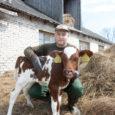 """Kui seni on Saaremaal piimatootjaid aasta-aastalt aina vähemaks jäänud, siis Pihtla valla noormees Taavi Tuuling kavatseb hakata looma uut piimakarja. """"Ma olen piimatootmise keskel üles kasvanud ja seda olen ma […]"""