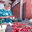 Kui Saarte Hääl eelmisel nädalal turul maasikahindu uuris, müüdi maasikaid ka kilohinnaga 6 eurot. Eile olid hinnad veidi madalamad, kõige kallimate kilohind oli 4,5 eurot ja kõige odavamad moosimaasikad sai […]