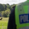Eile kella 11 ajal häiris Kuressaare–Kuivastu maanteel Reina külas liiklust omapäi kõndiv hobune. Politseipatrulli eest põgenes häiritud loom üle viljapõldude metsa poole. Politsei pressiesindaja Kaja Kuke kinnitusel saadi hobune kätte. […]