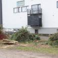 Esmaspäeval alustas AS Tesman Kuressaare linnavalitsuse hoone taga Tallinna tn 10 kinnistul parkla ehitust. Töö tellija on SPA Varad OÜ, linnavalitsus toetab parkla ehitust omalt poolt 60 000 euroga. Eilsest […]