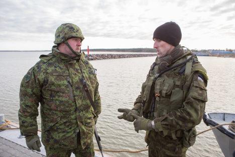 Saaremaa malev osales Hiiumaa vabastamisel