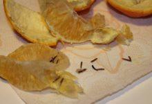 EKSOOTILINE PUUVILI USSIDEGA: Apelsini seest avastas sööja ussikesed. Foto: erakogu