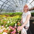 Noortaluniku toetuse eest väikse aiandi rajanud Valjala noorik Piret Lember ootab aiapidajaid oma uhiuude kasvuhoonesse taimi ostma. Valjala vallas Kuiste külas asuva OÜ Taimemaailm 250 m2 suuruse põrandapinnaga kasvuhoone sai […]