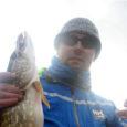 Kalapüügivõistluse korraldaja Aivar Sõrm seekordsest kaotusest suurt numbrit ei teinud, sest juba sügisel tuleb uus võimalus mandri omadele tagasi teha. Laupäeval peetud võistlusel osales 54 õngitsejat, neist kaks naised. Suurim […]