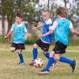 Eesti jalgpalli liidu korraldatud suvelaagris Kuressaares osaleb 18 kümneaastast poissi, neist üks Tallinnast. Esmaspäevast reedeni vältavas laagris on iga päev kaks treeningut ja lõuna. Treener Jan Važinski ütles, et pooled […]