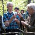 """Kuuskümmend metsandusspetsialisti üle Eesti kogunes eile Saaremaale, et oma silmaga kaeda kahjustusi, mida on siinsele metsale tekitanud okkakahjurid nõmme-võrgendivaablane ja okkalainelane. """"Tahame metsakaitse spetsialistidele tutvustada ja näidata, kuidas need kahjustused […]"""