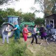 """Laupäeva hommikul kogunes Orissaare valla Kareda külla Sarapiku talu põlengu koristustalgutele vabatahtlike armee, keda kokku oli üle viiekümne. """"Jäime talgutega väga rahule,"""" märkis peakorraldaja, külaseltsi Tagavere Optimistid juhatuse liige Tõnn […]"""