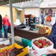 """Maasikakasvatajate kinnitusel on jahe ja külm suvi marjade valmimist ja küpsemist mõjutanud omajagu. """"Saak on enam-vähem, aga marjaaja algus muidugi venib,"""" ütles eile esimest päeva maasikatega turul olnud Kristel Paomees […]"""