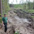 """Selle aasta 7. juunil kirjutasime artiklis """"Metsaveorööpad tõid Kokil tüli"""" sellest, kuidas märja ajaga metsamaterjali rasketehnikaga välja vedanud Saaremaa metsaühistu tekitas naaberkinnistule poolemeetrised rööpad. Siis kinnitas ühistu juht Mati Schmuul, […]"""