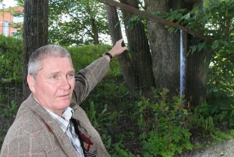 OHTLIKUD PUUD: Direktor Tõnu Erin selgitab, et spordiväljakul olevad puud võivad õnnetuse põhjustada. Foto: Irina Mägi