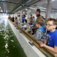 Tallinna tehnikaülikooli (TTÜ) mullu Kuressaares avatud väikelaevade kompetentsikeskus investeerib seoses projekti pikenemisega täiendavalt üle 350 000 euro, millest ligi 300 000 annab ettevõtluse arendamise sihtasutus (EAS). Näiteks on plaanis osta […]