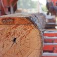 Läinud nädalal kirjutas Saarte Hääl, et vaidlusi põhjustanud plaan rajada Praakli külla suur puiduladustusplats on võtmas uut suunda. Arendaja Metskond OÜ esitas Kaarma vallavalitsusele taotluse algatada uus detailplaneering, rajamaks sellesse […]
