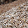 Muhu vald vahetab uue vastu välja enam kui 20 aasta vanuse puiduhakkuri, mis on aidanud toasoojaks muuta kümnete kilomeetrite kaupa teeäärset võsa. Muhu valla kommunaalameti juhataja Arvo Vaga sõnul võiks […]