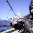Kuidas on Nasval lood varajase särjesaagiga ning mida põnevat kalamehed särjepüügi kõrvale pajatavad, käis kaameraga välja selgitamas Maanus Masing.
