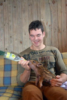 JÄRJEKORDNE EINE: Pereisa Risto Ränk söödab Tiiut lutipudelist. Foto: Heidi Hanso